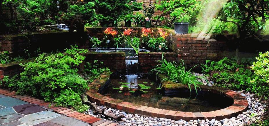 Design build koi ponds garden ponds arlington va for How to build a koi pond